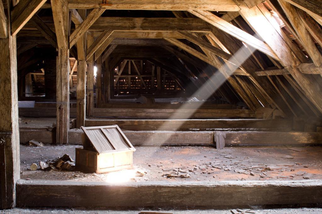 Skimmelsvamp i loftrummet kan brede sig til boligen og give dårligt indeklima!